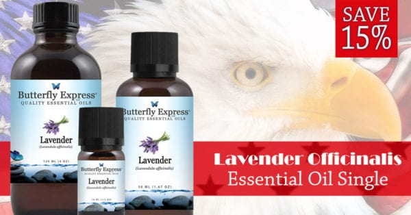 Lavender Officinalis Essential Oil