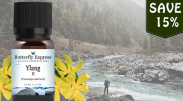 Ylang II Essential Oil from Butterfly Essential Oils